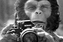 Photograph :: Funny Photographer is ...