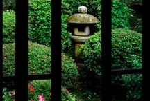 Japanese Gardens / Inspired by our spring 2014 paperback release of The Japanese Tea Garden by Marc Peter Keane