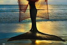 Down by the seaside /  Sea Inspired Quotes, Lighthouses, Ships, Mermaids, the Sun & Moon over the Ocean, Shore Loving Flora & Fauna, Beautiful Beaches...all things Of the Coast... I am a Jersey Girl and I heart the Shore... / by Cynthia Baran