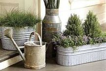 How Does Your Garden Grow? | Lifestyle