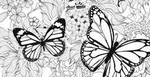 Adult Coloring Pages / Adult coloring pages and coloring books. Coloring therapy for grown-ups.