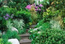 Perfect Garden - Perfekter Garten