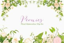 Cliparts - Florals Flowers / Cliparts - Floral Cliparts, Watercolor flowers, Peonies, Wedding floral clips