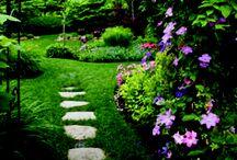 ~Future Garden Ideas~