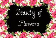 "Beauty of Flowers / ""After women, flowers are the most divine creation"" Christian Dior"