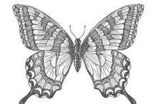 Card ideas, swallowtail