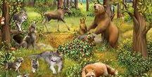Erdő világa