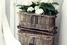 Basket Collection / by Pamela