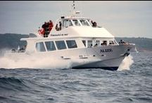 Bateaux Passagers, Mer, Navires, Vedettes / www.jmsea.fr