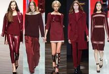 Trends AW 2014-2017 / Trends of the seasons