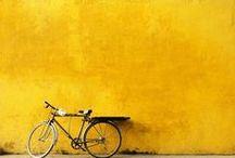 AMARELO/yellow