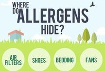 Air Quality / Tips and valuable information to combat allergens and improve in-home health, so you and your family can breathe better.