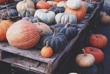 HÖST / Hösten på ingång