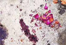 Nourritures Terrestres : My Art Direction work. / Nature morte * Still life / Food