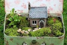 Fairy Garden/ Doll House
