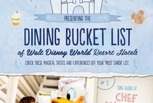 Disney world to do