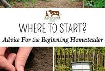 Gardening 101 / Just simple tips for the beginning or more advance gardener.