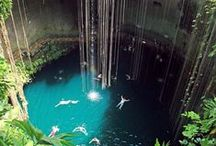 >> Cenotes << / Those magical swimming holes we all wanderlust over. Contribute email: hello@storyv.com