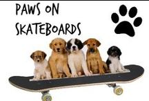 ☺︎ Paws On Skateboards