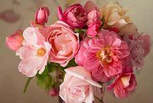 Há flores em tudo que vejo