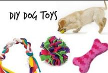 ✄ Diy Dog Toys