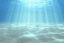 Beachcause It Inspires Me / The sea, it calls my name...