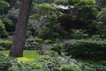Landscapes & Hardscapes / Beautiful landscaping and hardscaping, both refined and rustic