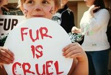 Fur is NOT Fashion / Be cruelty free please!