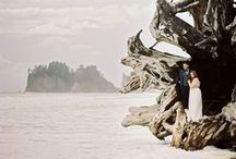 Moody + Artful Weddings