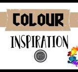Colour Inspiration - ENZO JEANS