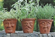 Gardening - Info, Ideas, Containers, Projects & More / by G Cone