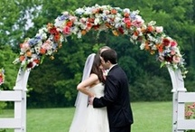 Weddings  / by G Cone