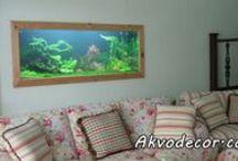 www.akvodecor.com / Akvodecor adalah unit usaha yang bergerak di bidang dekorasi air, khususnya aquascape, aquarium air laut, dan kolam koi