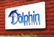 Welcome To Dolphin Suites