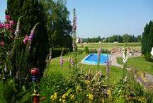 Balkon und Garten / mein Garten