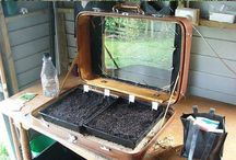 Green House Ideas / Building a Green house from reclaimed items seems like a good way to design one...