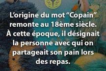 Francais / La langue francaise.