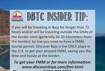 DBTC Baja Insider Tips / Travel tips for Baja, California
