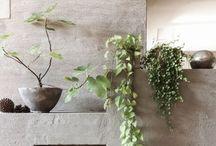 Interior decorations and ideas