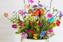 f l o w e r i s h / Bouquets & Decoration
