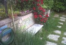 Le jardin de Re-Chic-le / Le jardin des chats fous