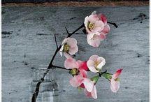 Flower Arrangements / by Corrie Wittebrood