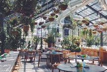 store design / Store & cafés