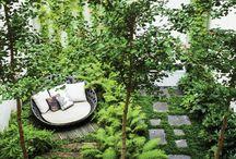 garden / outdoor spaces & gardening