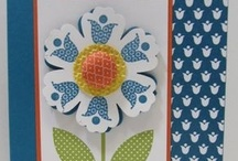 SU Bright Blossoms (R) / by Marsha Lasher