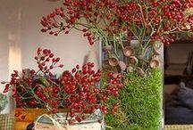 Christmas Decoration / Decoração de Natal