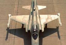 F 20 Tigershark