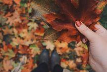 Fall ☕️