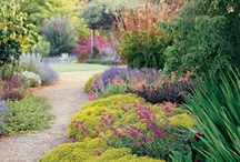 Gardens & Patios / by Heather Gordier