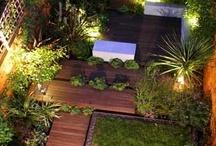 Exterior-Garden